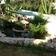 primer estanque - imagen 1